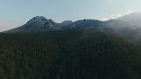 Forêt et montagne aériennes clips vidéos