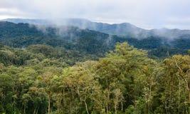 Forêt et montagne dans Dalat, Vietnam Image libre de droits