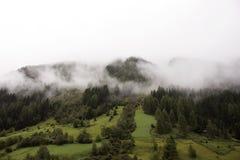 Forêt et montagne en parc naturel de Kaunergrat au Tyrol, Autriche Photographie stock libre de droits