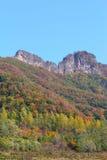 Forêt et montagnes d'automne photo stock