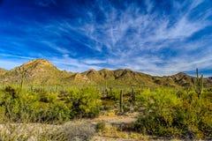 Forêt et montagnes dans Sedona, Arizona Image libre de droits
