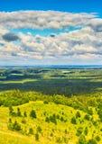 Forêt et prés coniféres Images libres de droits