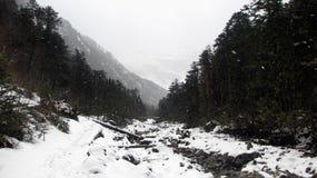 Forêt et rivière dans la chute de neige importante Photos stock