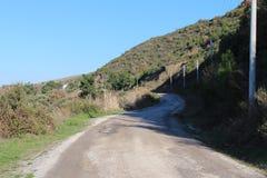 Forêt et route de côte images libres de droits
