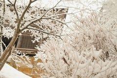 Forêt et tombeau en chutes de neige au yamadera Japon photos stock