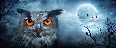 Forêt fantasmagorique fâchée d'Eagle Owl At Moonlight In The Image libre de droits