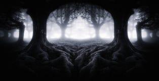 Forêt foncée effrayante avec des racines d'arbre photo libre de droits