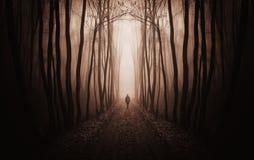Forêt foncée surréaliste avec l'homme marchant en brouillard Image stock