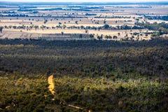 Forêt indigène en parc national de Grampians, Australie photo libre de droits