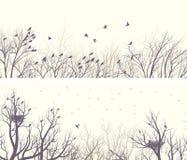 Forêt large horizontale de bannières avec des branches et des oiseaux d'arbre Photographie stock libre de droits