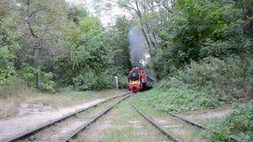 Forêt, locomotive de vintage, chemin de fer d'enfants de Kiev, banque de vidéos