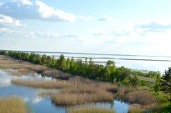 Forêt magique au milieu de méditation de lac et de photo de détente Image libre de droits