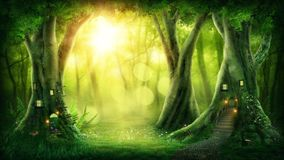 Forêt magique foncée photos libres de droits