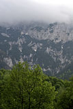 Forêt, montagnes et nuages Photographie stock