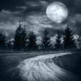 Forêt mystérieuse sous le ciel nuageux dramatique la nuit pleine lune Photos stock