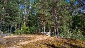 Forêt naturelle avec des rochers de granit Nature du nord, forêt un jour ensoleillé avec des nuages dans le ciel photos libres de droits
