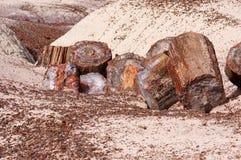 Forêt pétrifiée, Arizona, Etats-Unis Photographie stock