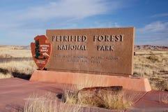 Forêt pétrifiée, Arizona, Etats-Unis Image stock