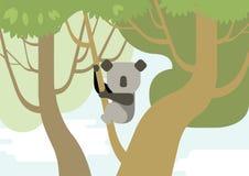 Forêt plate de branche d'arbre d'animaux sauvages de vecteur de bande dessinée de conception de koala Photographie stock libre de droits