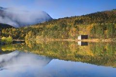 Forêt reflétée à l'automne Image stock