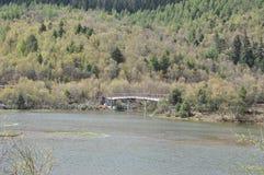 Forêt, rivière, pont, la combinaison parfaite de la nature et de la personne photos stock
