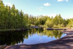 Forêt russe images libres de droits