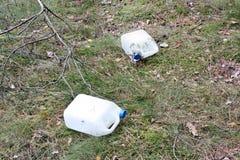 Forêt sauvage de décharge Image stock