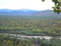 Forêt sibérienne dans l'autemn image stock