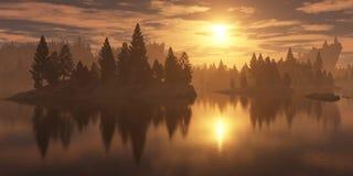 Forêt sur la côte au coucher du soleil Photographie stock