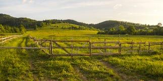 Forêt sur les collines et une barrière Photo stock