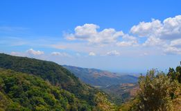 Forêt sur Monteverde, Puntarenas Costa Rica Photos libres de droits