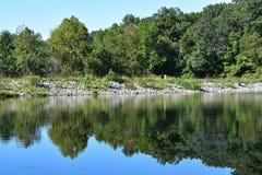Forêt totalement réfléchie sur un lac calme Photographie stock libre de droits