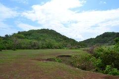 Forêt tropicale chez Uluwatu - Bali, Indonésie Images libres de droits