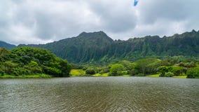 Forêt tropicale hawaïenne dans le Koolaus Photographie stock