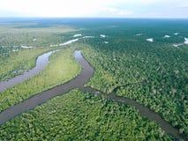 Forêt tropicale tropicale du Bornéo photographie stock