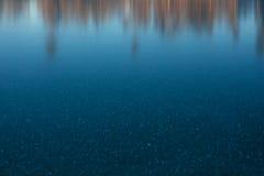Forêt trouble au coucher du soleil Photo stock