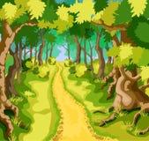 Forêt verte d'été Photos libres de droits