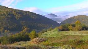 Forêts à feuilles persistantes sur des pentes de montagne enveloppées en bas nuage menteur pour un paysage rêveur, clips vidéos