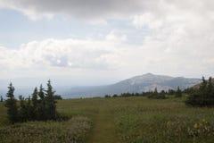 Forêts de montagnes et traînées des Monts Oural du sud Image stock