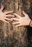 Forêts et arbres d'amour d'arbre d'étreinte de femme de main Images libres de droits