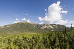 Forêts et montagnes en parc provincial de lac Muncho Photographie stock