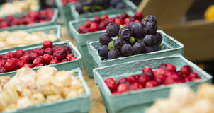 For Sale At The Farmer Market Royalty Free Stock Photography