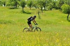 Fora ciclista imagens de stock royalty free