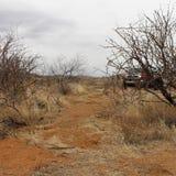 Fora da estrada 4x4 Fotos de Stock Royalty Free