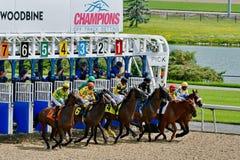Fora de e correndo no autódromo de Wodbine em Toronto imagens de stock royalty free