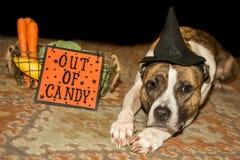 Fora dos doces de Dia das Bruxas Imagem de Stock