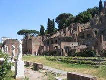 Fora Romanum royaltyfri foto