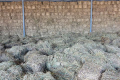 Forage grasses warehouse Royalty Free Stock Photo