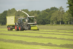 Forage harvester and transport grass with green tra Royalty Free Stock Photos