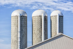 Forage Silos Stock Image